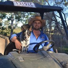 A Journey from Schoolboy to Stockman